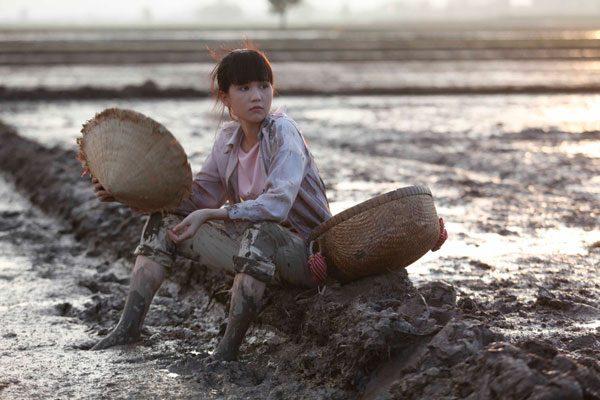 Rice seedling